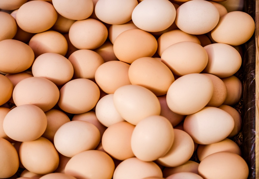 Eggs for conceiving