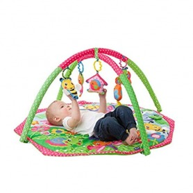 Playgro Bugs N Bloom Activity Gym