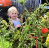 Lee's daughter Olive gets busy in the garden