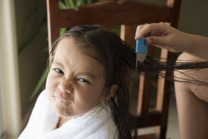 كيف تحمي طفلك من الإصابة بالقمل؟